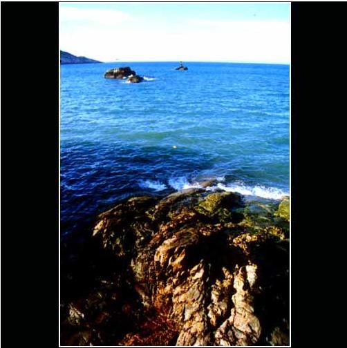舟山海洋文化摄影短片集